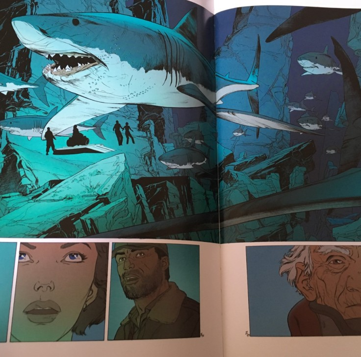 Requins double page